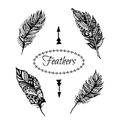 Hand drawn zentangle black feathers set vector image