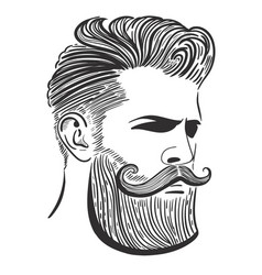 Portrait a man with a beard and haircut vector