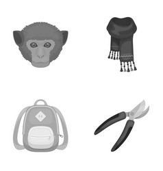 Animal education and other monochrome icon in vector