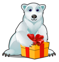animated polar white bear with christmas gift box vector image