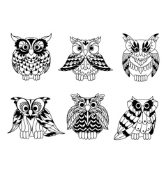 Cartoon outline owl birds set vector image