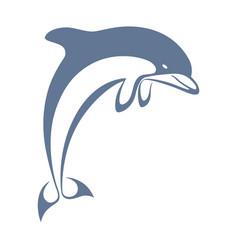 Dolphin blue vector