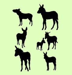 donkeys animal gesture silhouette vector image