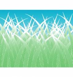 grass blades vector image