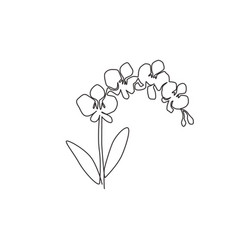 One single line drawing beauty fresh gladiolus vector