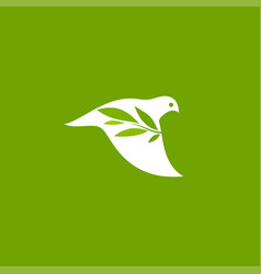 peace dove with olive branch on green background vector image