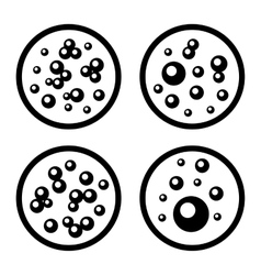 Petri Dishes with Bacteria Icons Set vector image