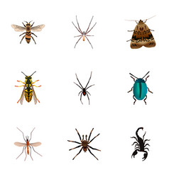 Realistic arachnid poisonous bee and other vector