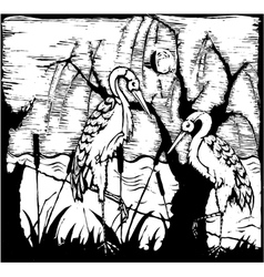 Storks vector