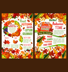 Autumn pumpkin fruit and berry harvest poster vector