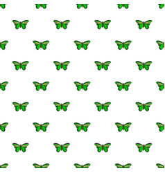 Butterfly great mormon pattern seamless vector