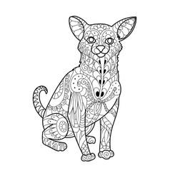 chihuahua dog coloring book vector image