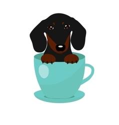 Cute Dachshund dog in blue teacup vector