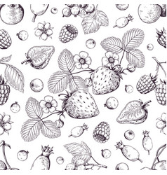 hand drawn berries pattern vintage forest cherry vector image