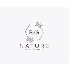 Initial rs letters floral frames botanical vector