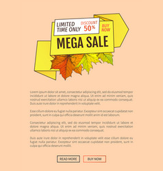 Limited time only buy now discount promo poster vector