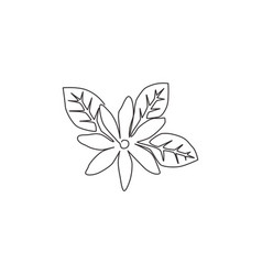 one single line drawing beauty fresh deciduous vector image