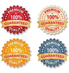 Vintage badge design set vector image