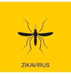 Zika mosquito Zika virus alert Zika virus vector