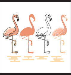 flamingo silhouettes set vector image vector image