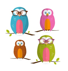 Owls Set Isolated on White Background vector image vector image