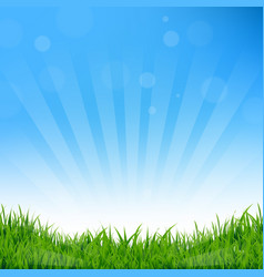 blue sunburst and grass background vector image vector image