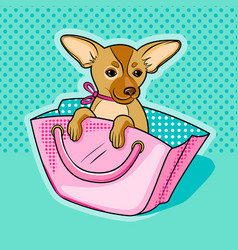 Chihuahua dog in pink woman handbag vector