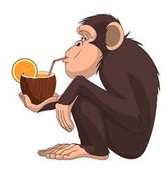 Chimpanzee 50 vector