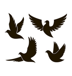 Dove image set vector