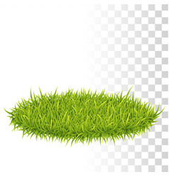 Oval carpet of grass vector