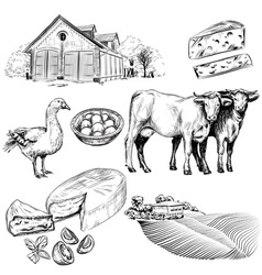 Hand Drawn Set of Farm and Agriculture Icons vector image vector image