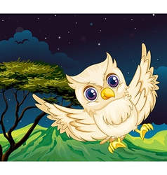 A nocturnal creature vector image