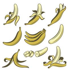 Banana fruit set vector