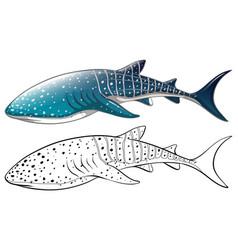 Doodle animal outline killer whale vector