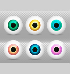 eyeballs set realistic 3d eye iris pupil vector image