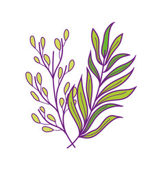 Foliage leaves branch nature vegetation icon vector