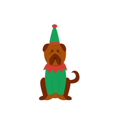 funny dog or puppy in elves green suit flat vector image