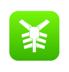 human thorax icon digital green vector image