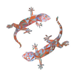 Isolated low poly colorful gecko with white back vector
