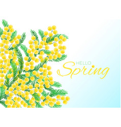 nature with simbol of spring vector image