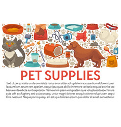 pet supplies banner template with dog and cat care vector image