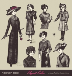 set elegant ladies vector image