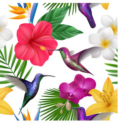 tropical pattern colibri with exotic flowers vector image