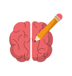 Brain pencil creativity school vector
