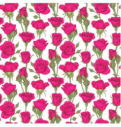 Beautiful vintage seamless pattern with roses vector