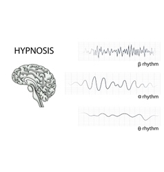 Brain electrical waves vector