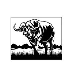 Buffalo - savanna africa wildlife wildlife vector