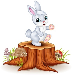 Cute bunny standing on tree stump vector image