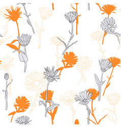 drawing seamless pattern with daisy flowers vector image