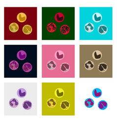 Icons set in flat style leukocyte vector